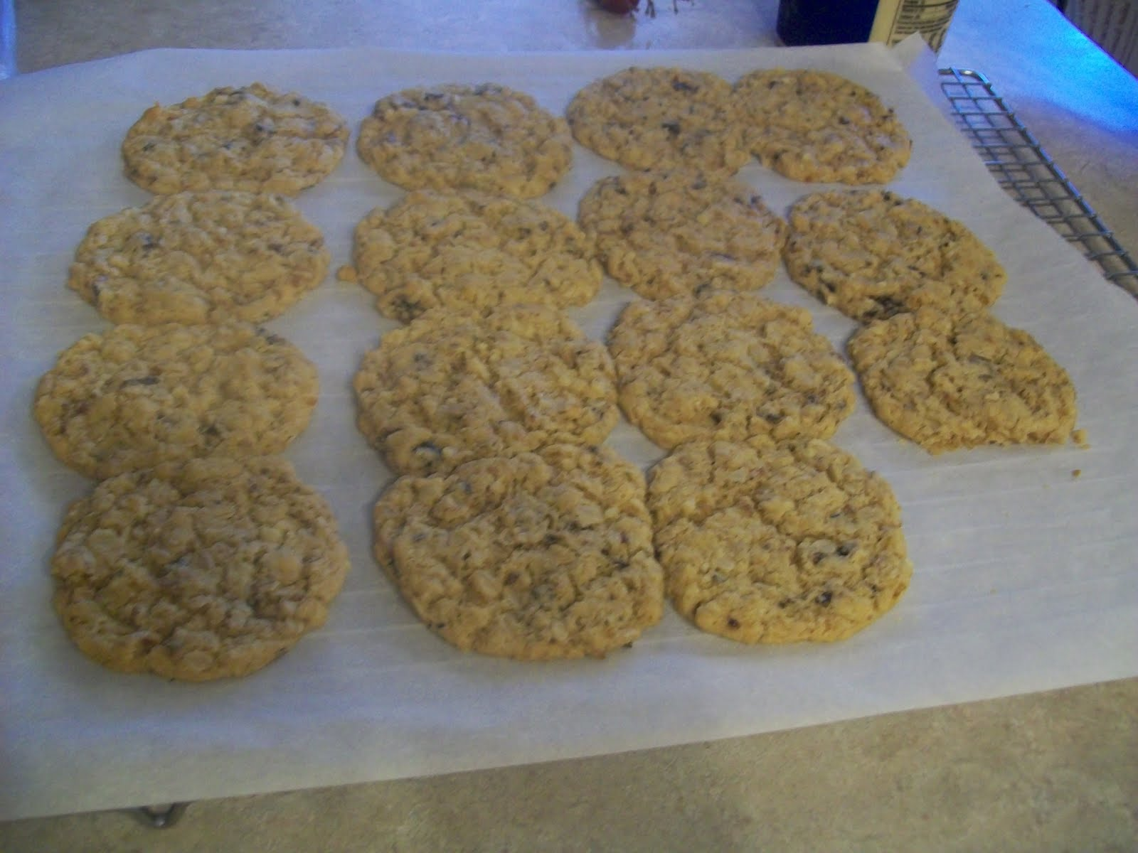 ... for the Ride: Rice Crisp Treat and Oatmeal, Walnut, and Plum Cookies