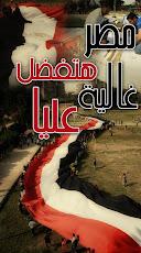 المصريون يصنعون أكبر علم فى العالم