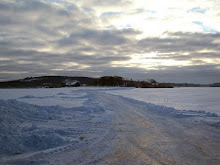 Ice landscape in Halland