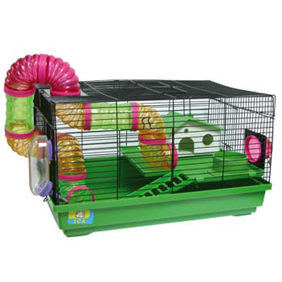 Hamsters Hams_09