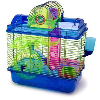 Hamsters Hams_12