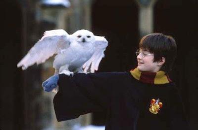 Harry Potter  7788