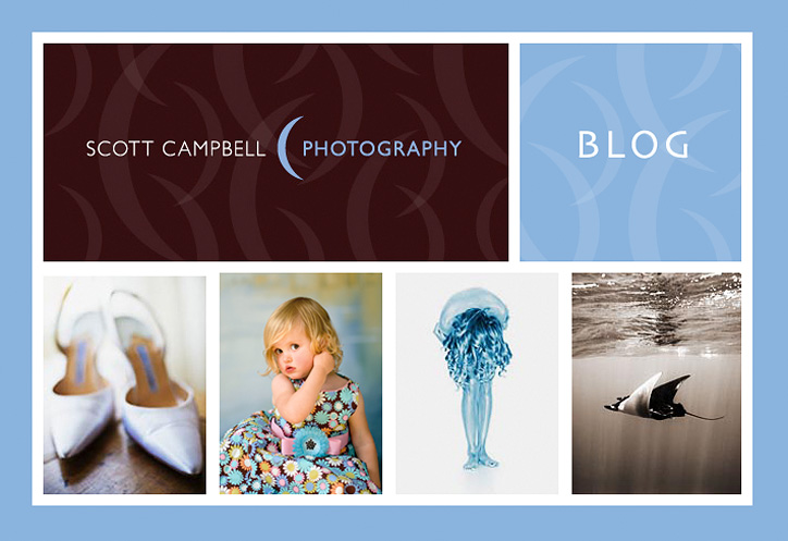 Scott Campbell Photography    ||  Blog ||