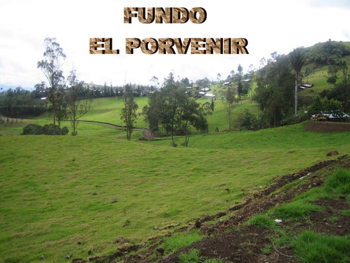 FUNDO EL PORVENIR