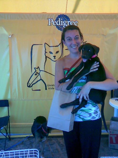Cachorra de tres meses adoptada