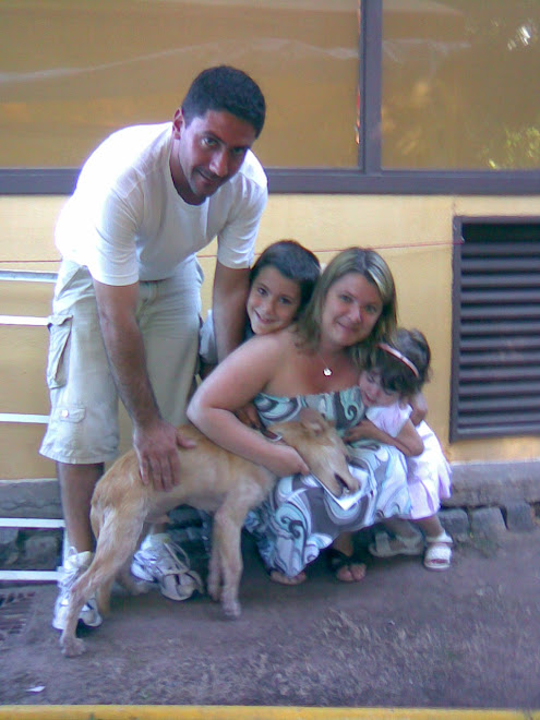 Cachorro de 6 meses adoptado