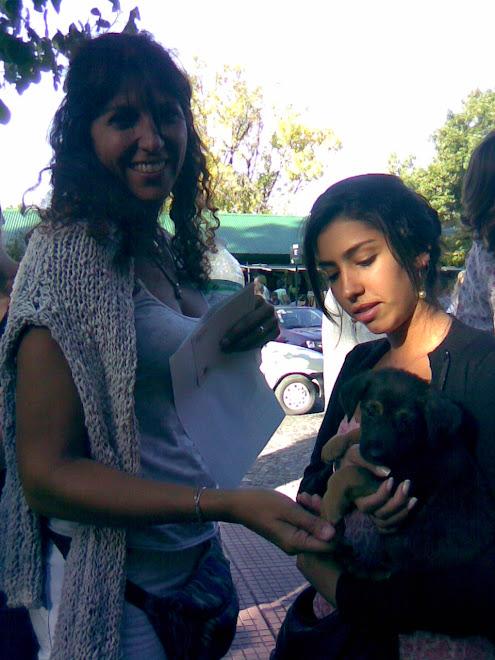 Cachorrito adoptado