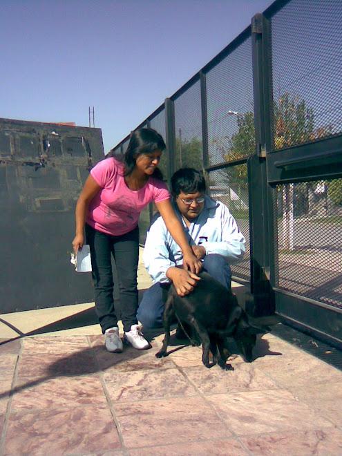 Negrita adoptada