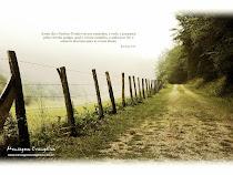 jesus e o caminho.