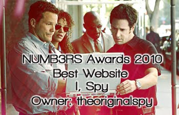 To the Numb3rs Fandom