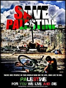 Lets help Palestine!