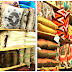 Shop Local - World Market