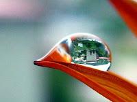 Landscape in raindrop