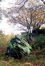 Pedra de Cailleach