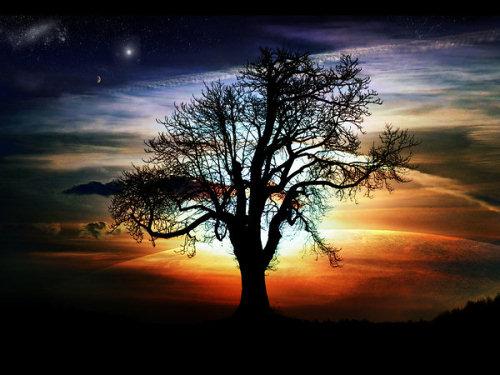 ظــلآآل Silhouette_by_phil20