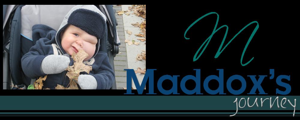 Maddox's Journey