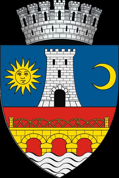 Chat Slatina