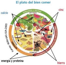 """El Plato del """"BIEN""""  comer, de tarevista de UNAM  """"COMOVES"""" . E redes locales : ir a www.nutrired."""