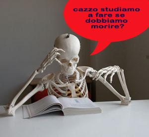 voglia di studiare, lavorare, blog