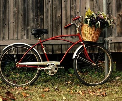 Bike Baskets on Want A Cute Little Bicycle Not A Mountain Bike But A Cute One