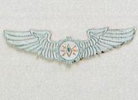 Avionics and Maintainance Officer Badge