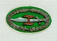 Combat Commander's Badge