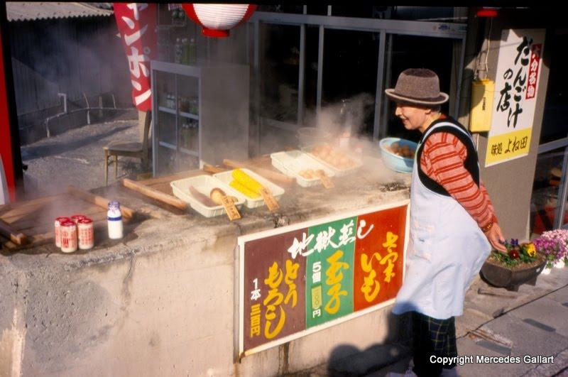 Baños Termales Japon:De vuelta hacia Beppu, nos percatamos que en una de sus calles estaban