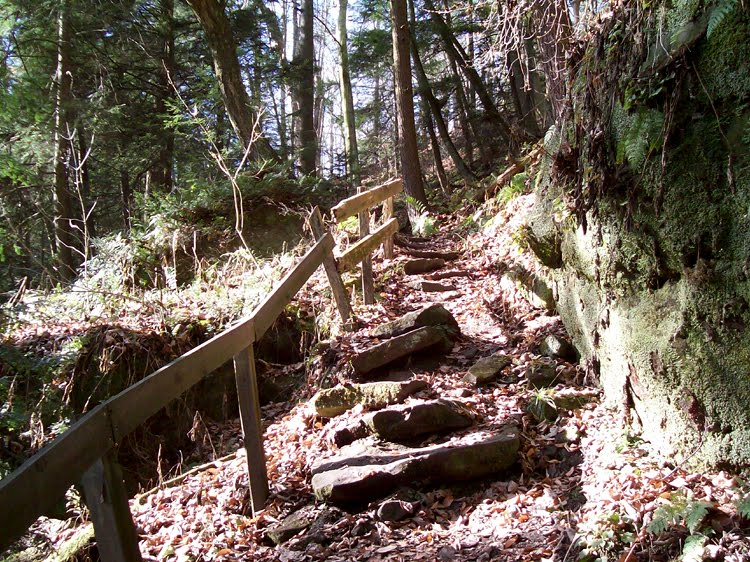 Kildoo Trail - McConnells Mill