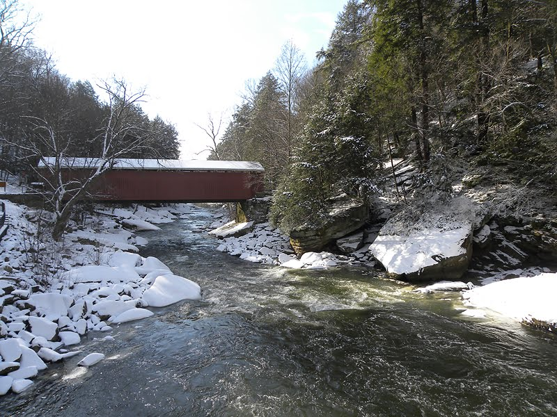 McConnells Mill - Covered Bridge