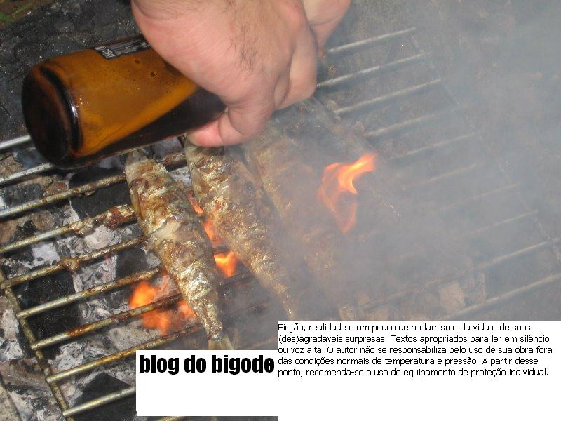 blogdobigode