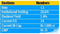 Small Cap Stock With High Dividend & A Growth Stock Too !