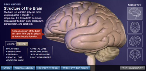 national geographic brain guide screenshot