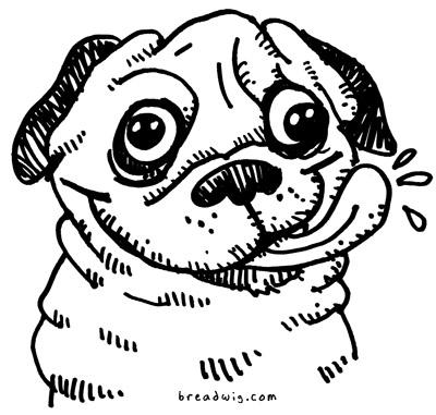 how to draw a cartoon pug face