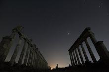 Palmyra firmament