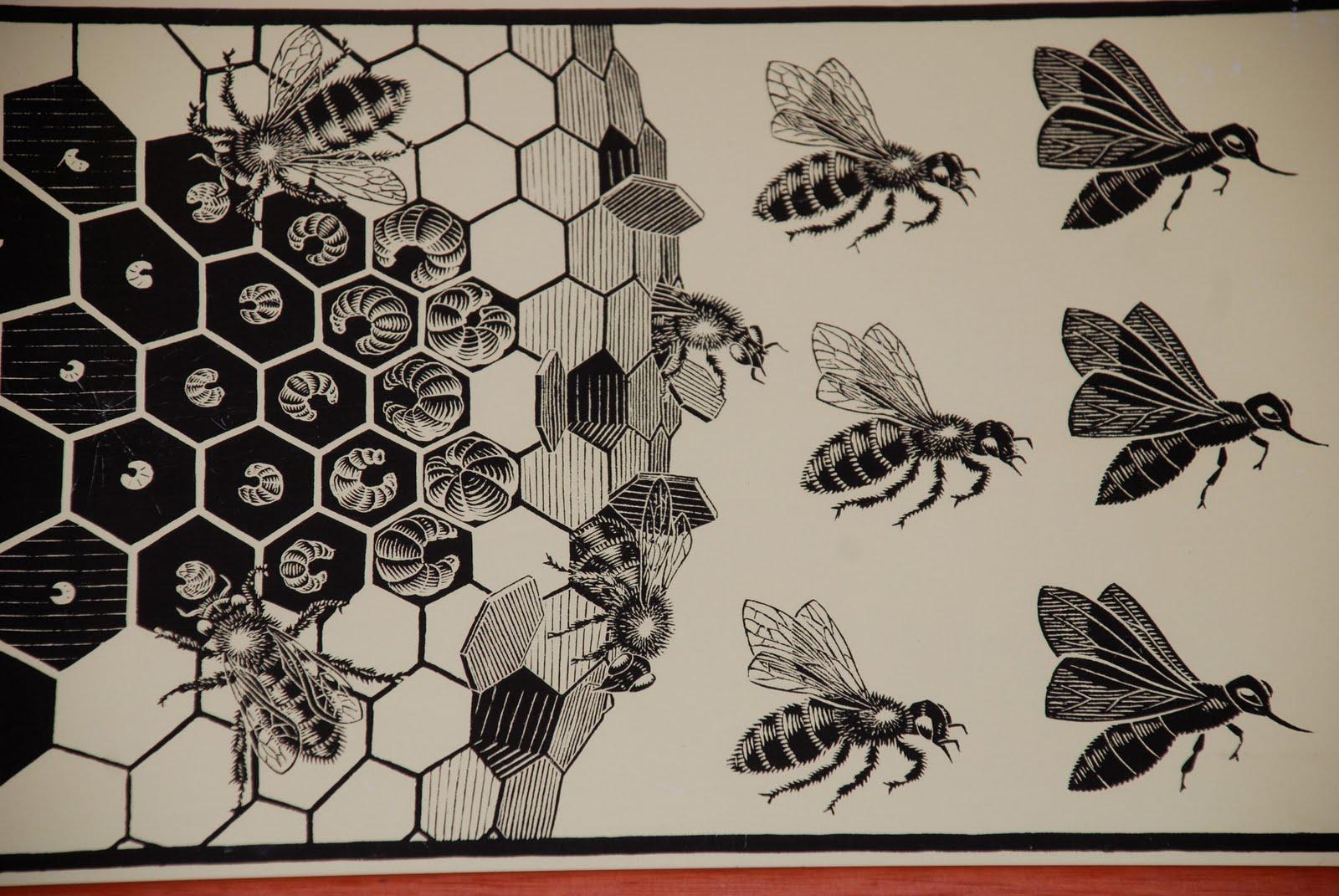 22 passi d 39 amore e dintorni metamorfosi for Escher metamorfosi