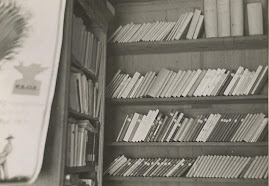 biblioteca en las trincheras