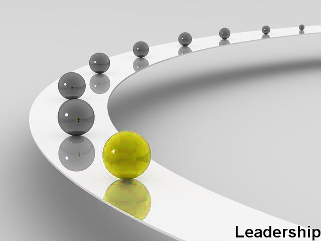 role of organizational development Organizational development is the use of organizational resources to improve   new foundations the role of organization development in large-scale.