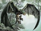 Dragon-noir ...