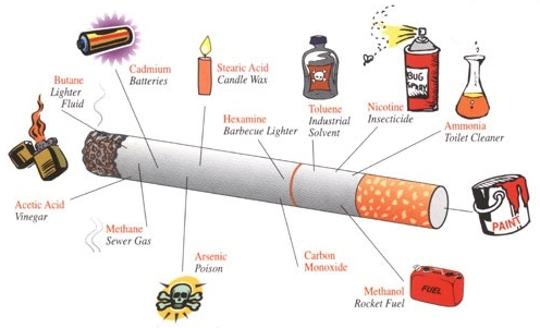 harmful effect of smoking essay