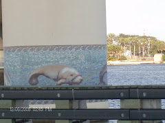 A lot of bridges--and some of them were well decorated.   this one reinforced the manatee zone.
