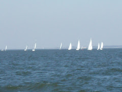 Sailors on Kentucky Lake having a great race.