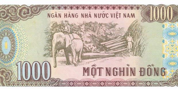 Stie Kalpataru Vietnam Devaluasi Mata Uang Lagi