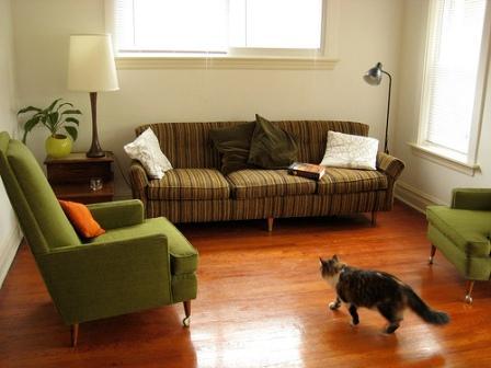 Soluciones para que tu gato no arañe el sofá