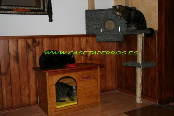 Casetas jaula y transport n de madera para gatos - Casas para gatos de madera ...