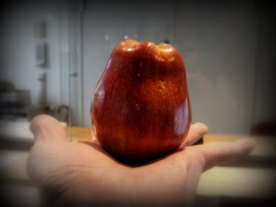 2009, Skärtorsdag. Det röda äpplet jag köpte nyss ser passande nog (eftersom det är påsk) ut som en tulpan.