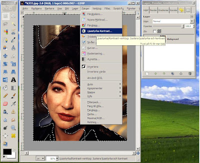 Editing Kate Bush in Gimp.