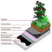 Schita straturi aplicate in cazul unui acoperis verde