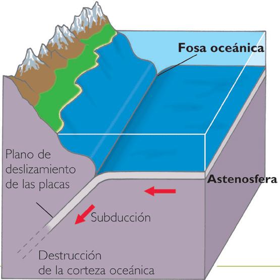 external image fosa-oceanica.png