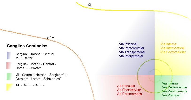 Anatomía Normal: Linfaticos de Mama