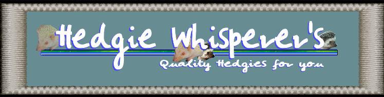 Hedgie Whisperer's